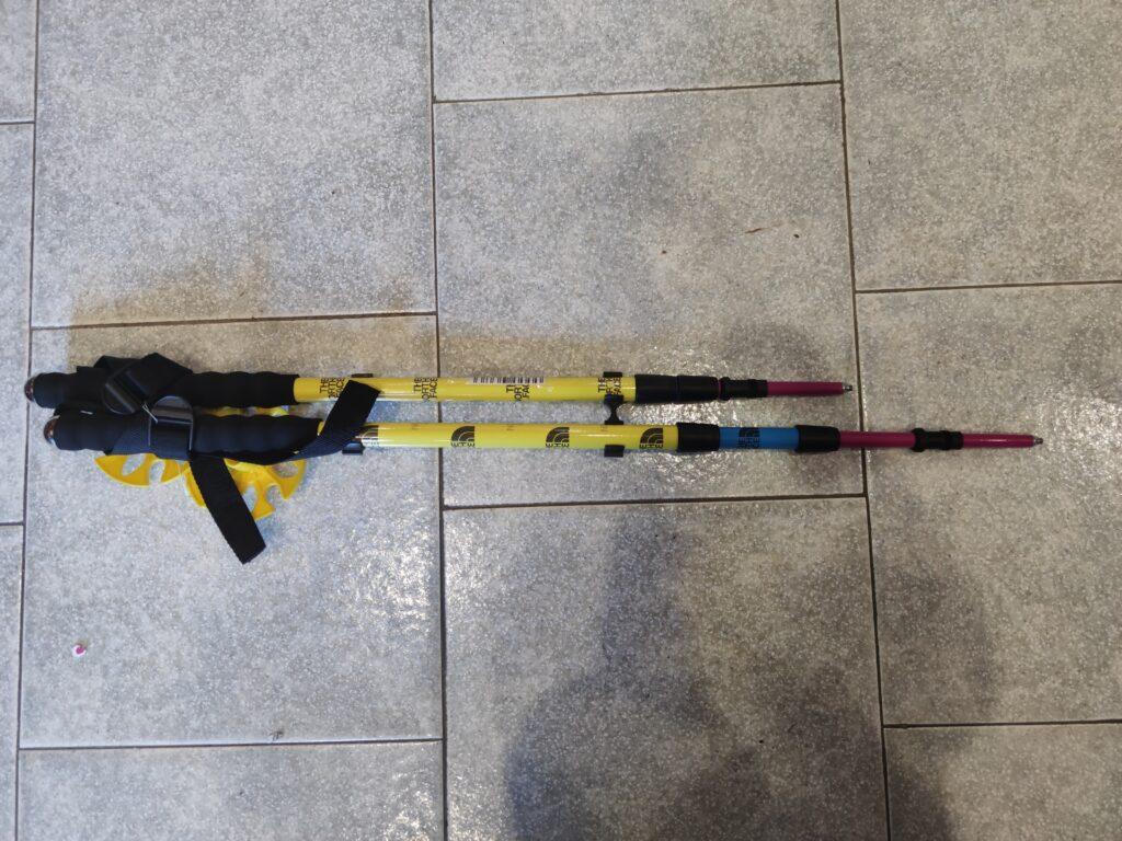 bastoncini nordic walking / sci